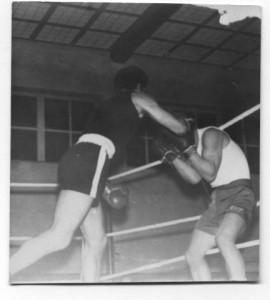 Boxkampf Ingelmann gegen Meyer